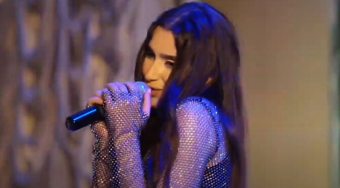 Watch: Ani Mnatsakanyan and her charity solo concert 'Kindness'